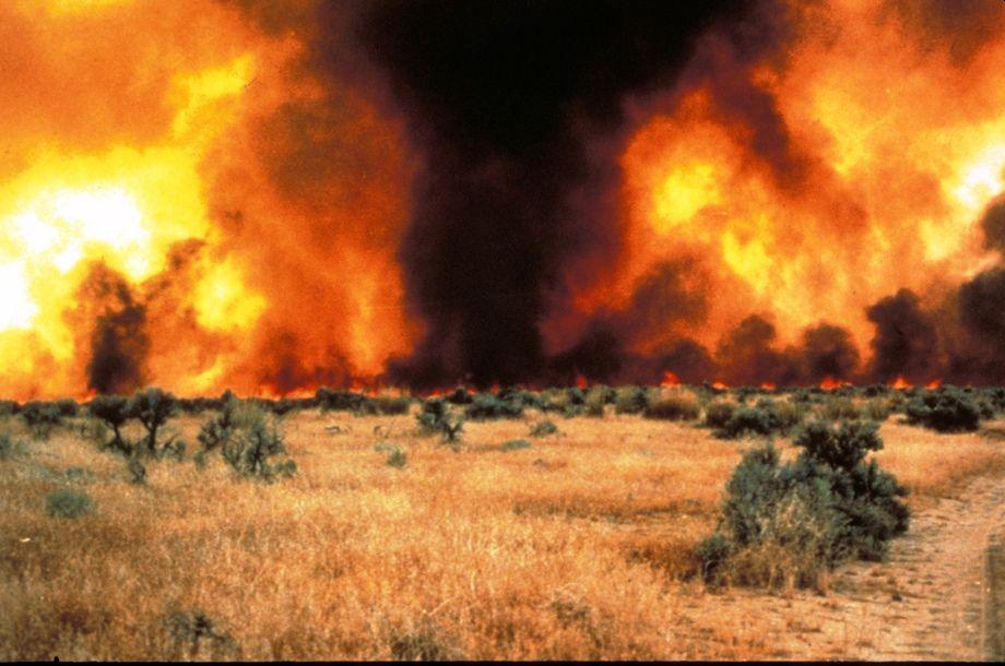 שריפה - דוח האקלים